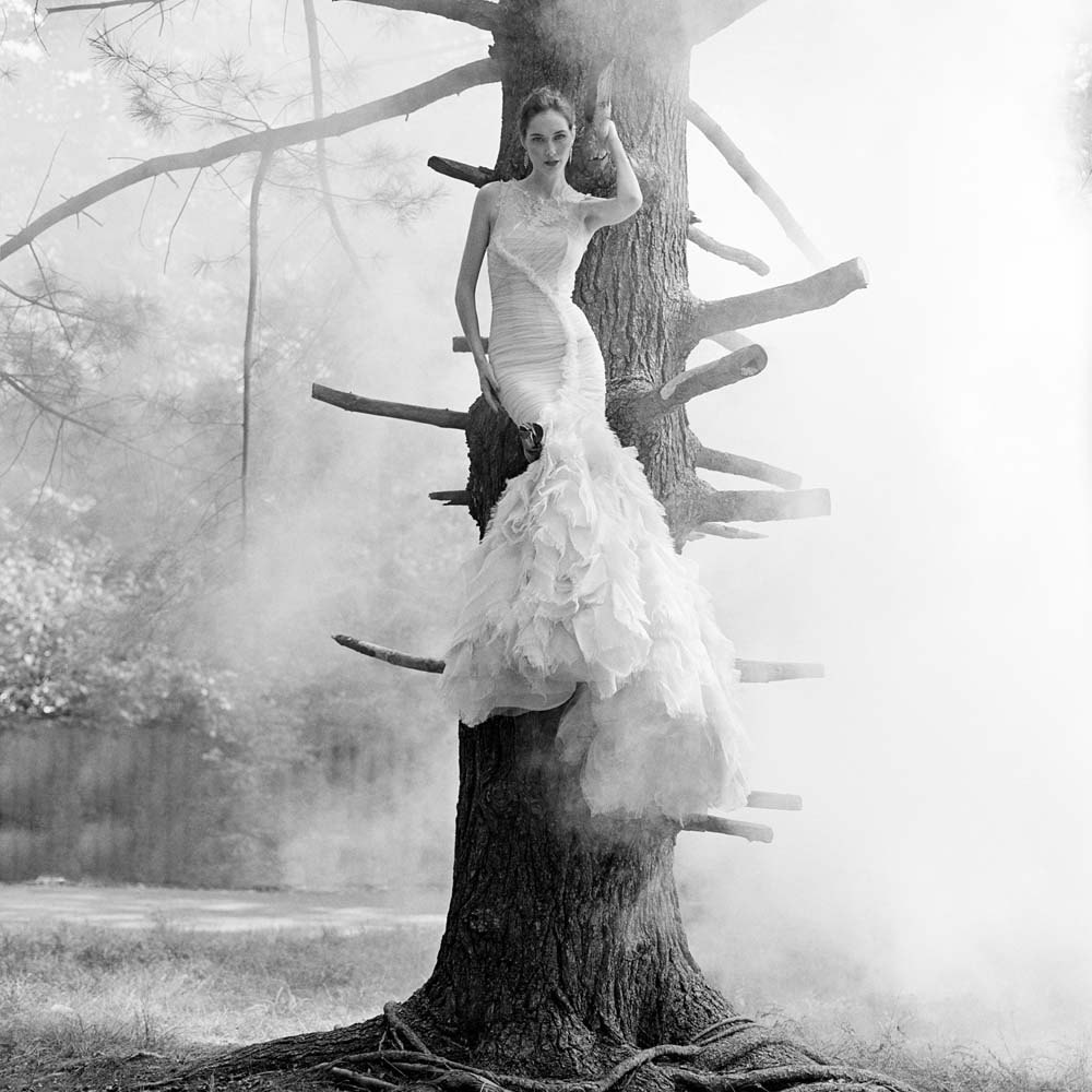 "<span class=""caption-title"">Flynn Perched in Tree</span>, Snedens Landing, New York, 2012<span class=""caption-copyright"">© Rodney Smith</span>"