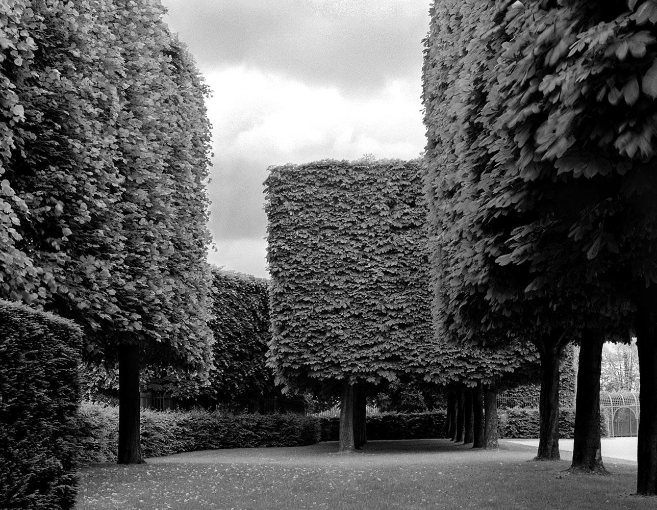 """<span class=""""caption-title"""">Landscape No. 1</span>, Parc de Sceaux, France, 1995<span class=""""caption-copyright"""">© Rodney Smith</span>"""