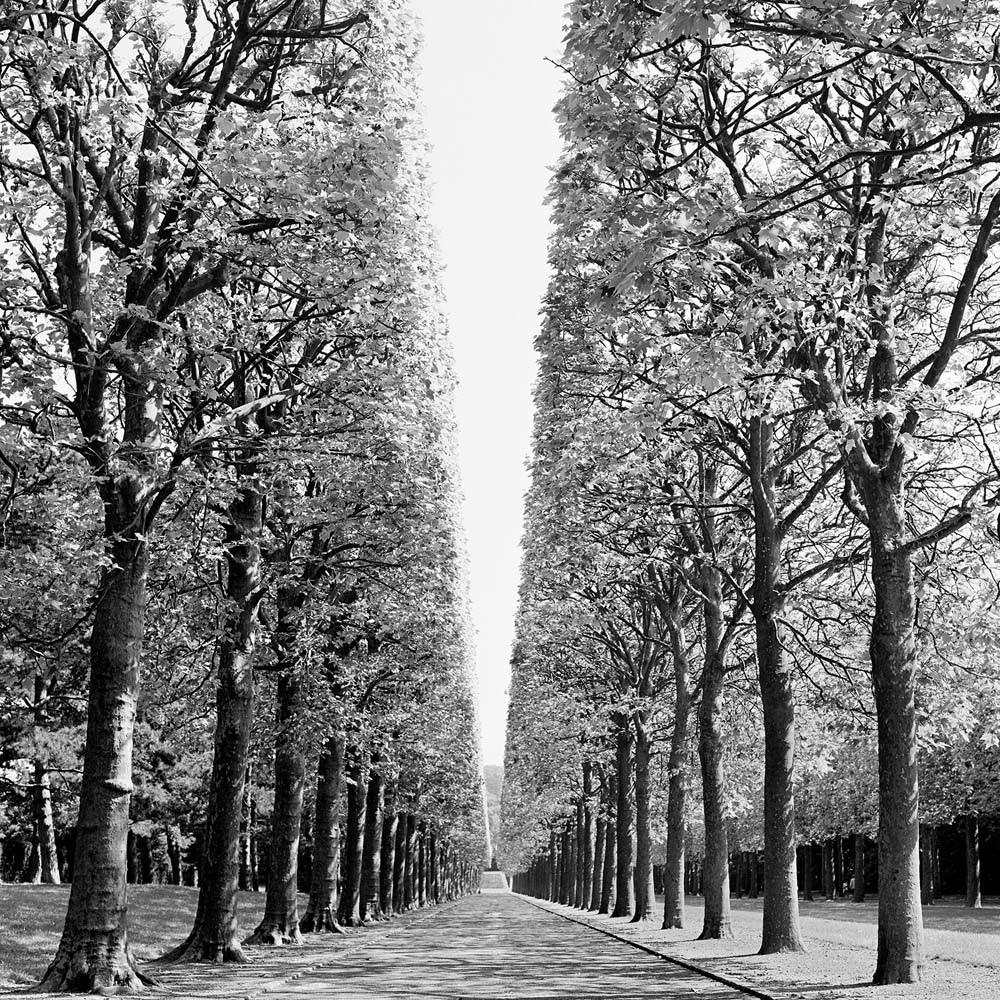 """<span class=""""caption-title"""">Landscape</span>, Parc de Sceaux, Paris, France, 1995<span class=""""caption-copyright"""">© Rodney Smith</span>"""