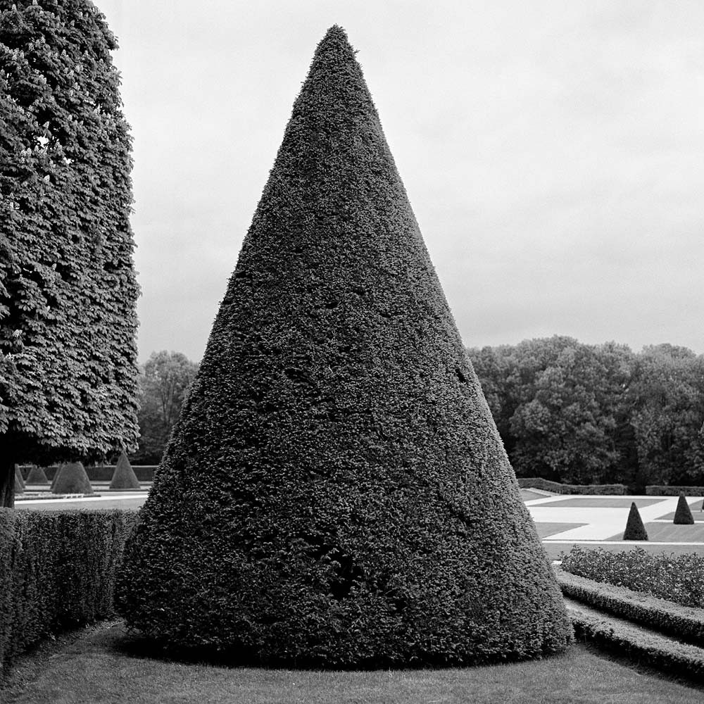 "<span class=""caption-title"">Singular Conical Topiary</span>, Paris, France, 2007<span class=""caption-copyright"">© Rodney Smith</span>"